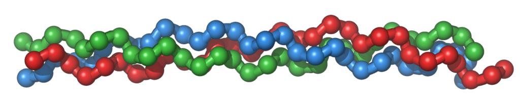 Kollagén- triplahélix szerkezet